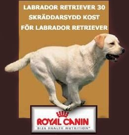 Visit Royal Canin