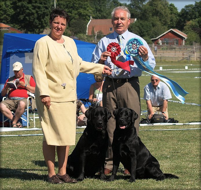 Panter & Payton winning Best In Show Brace at LRC Clubshow 2008