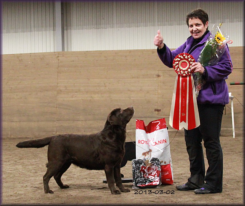 Best In Show, SSRK March 2013, first time out after her litter !